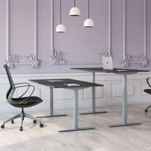 Höj och sänkbart skrivbord, silver stativ och mörkgrå skiva - Standard