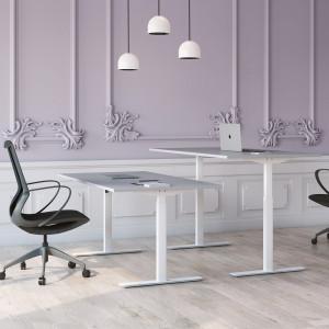 Höj och sänkbart skrivbord, vitt stativ och ljusgrå skiva - Standard