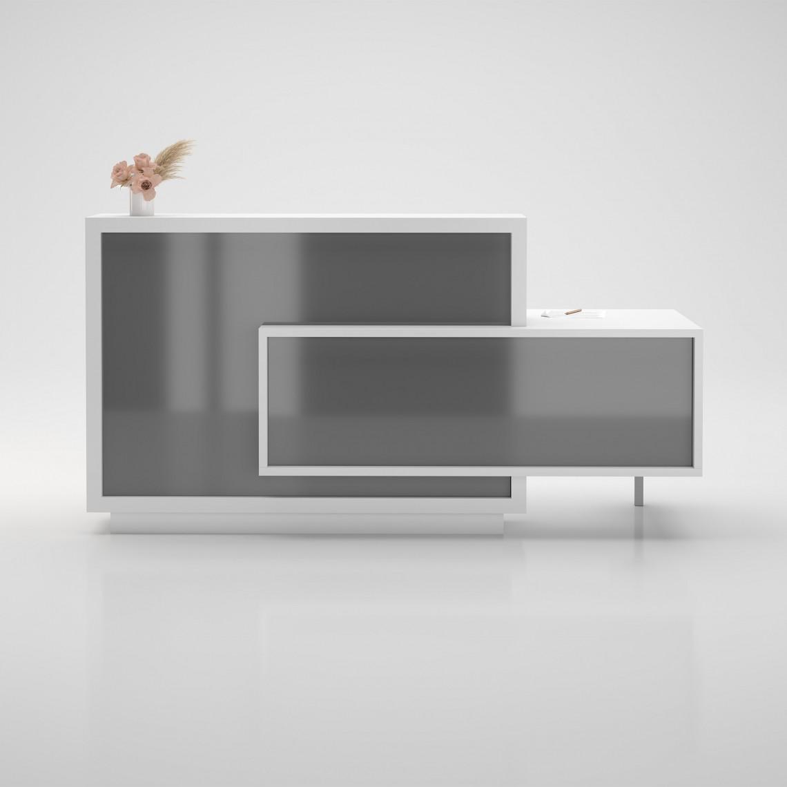 Fora Modell 1 - Receptionsdisk