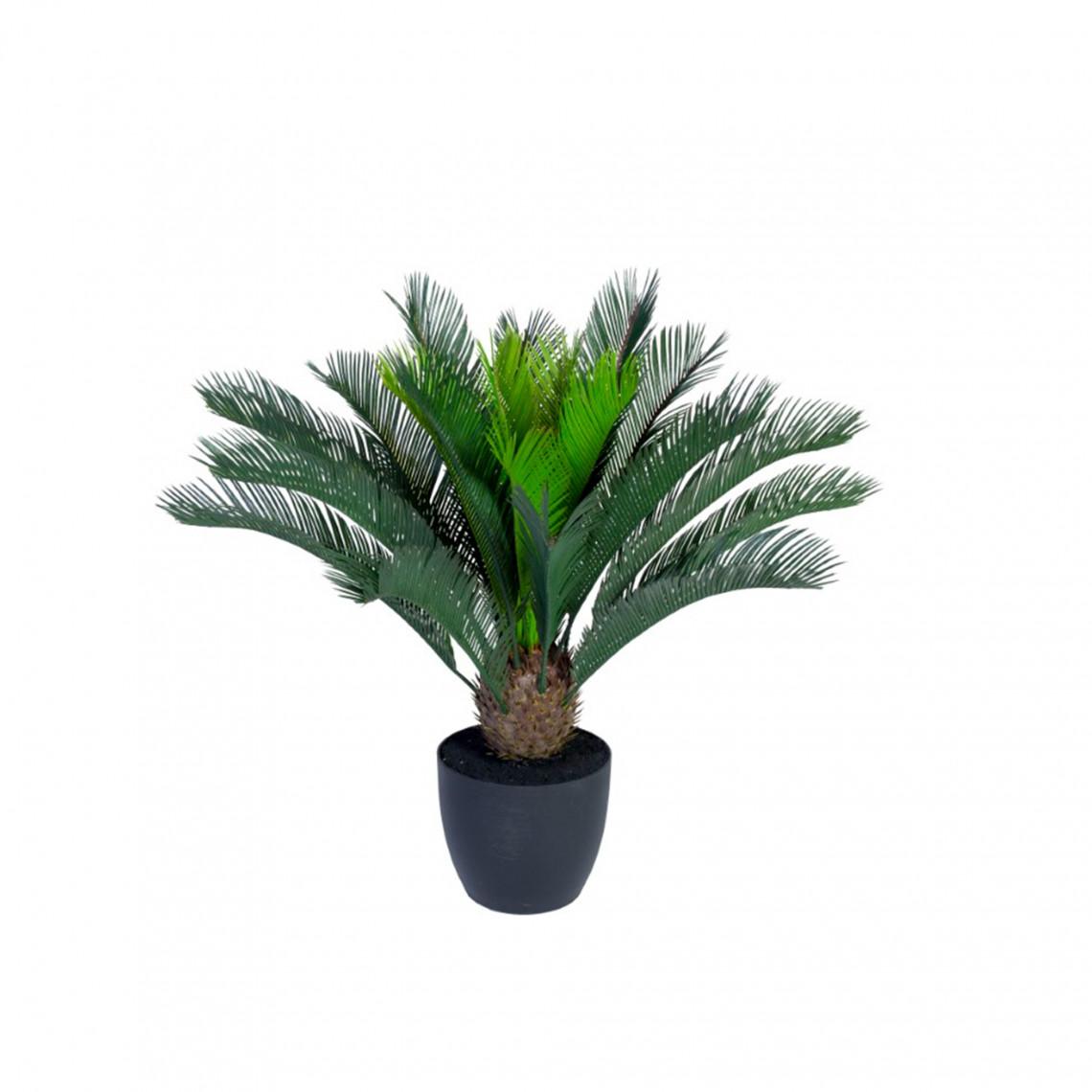 Konstväxt - Cycas Palm Small