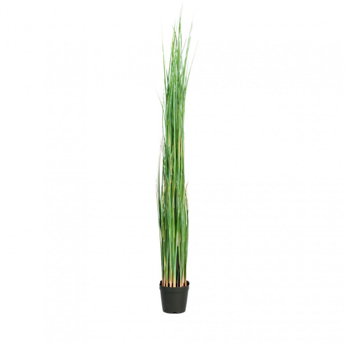 Konstväxt - Gräs large