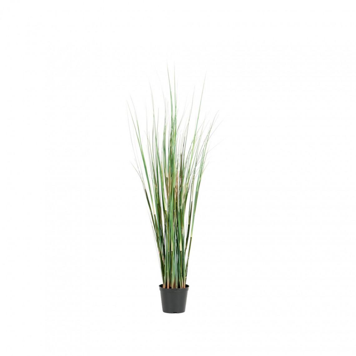 Konstväxt - Gräs small