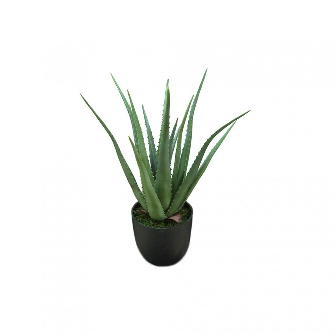 Konstväxt - Aloe Vera  (inkl. svart kruka)