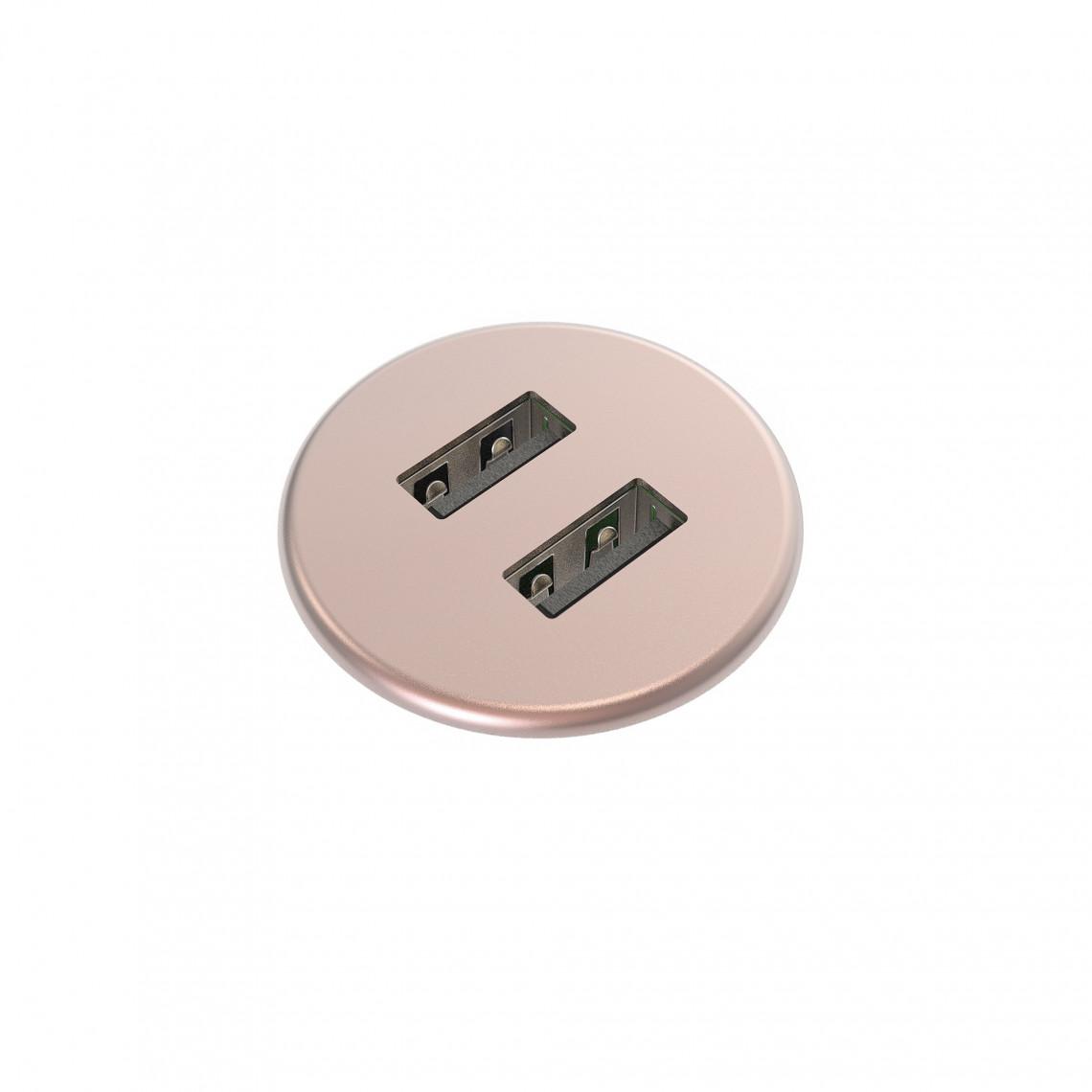 Powerdot MICRO - USB Laddare 2 portar 5V 2A - metall