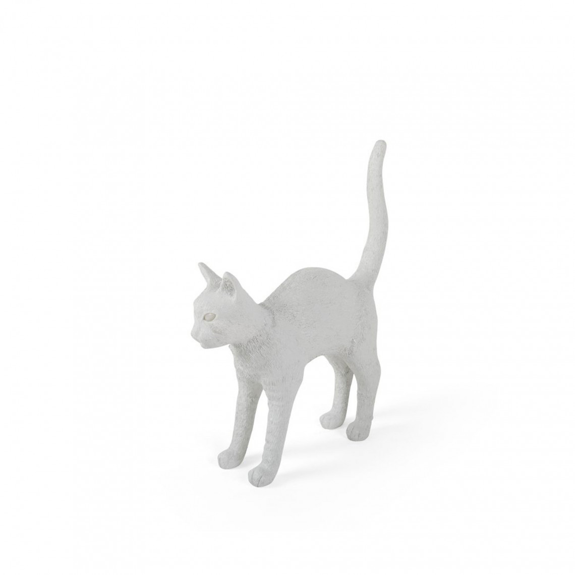 Jobby The Cat - Vit