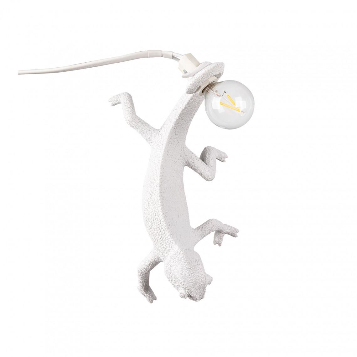 Chameleon Lamp - Going Down