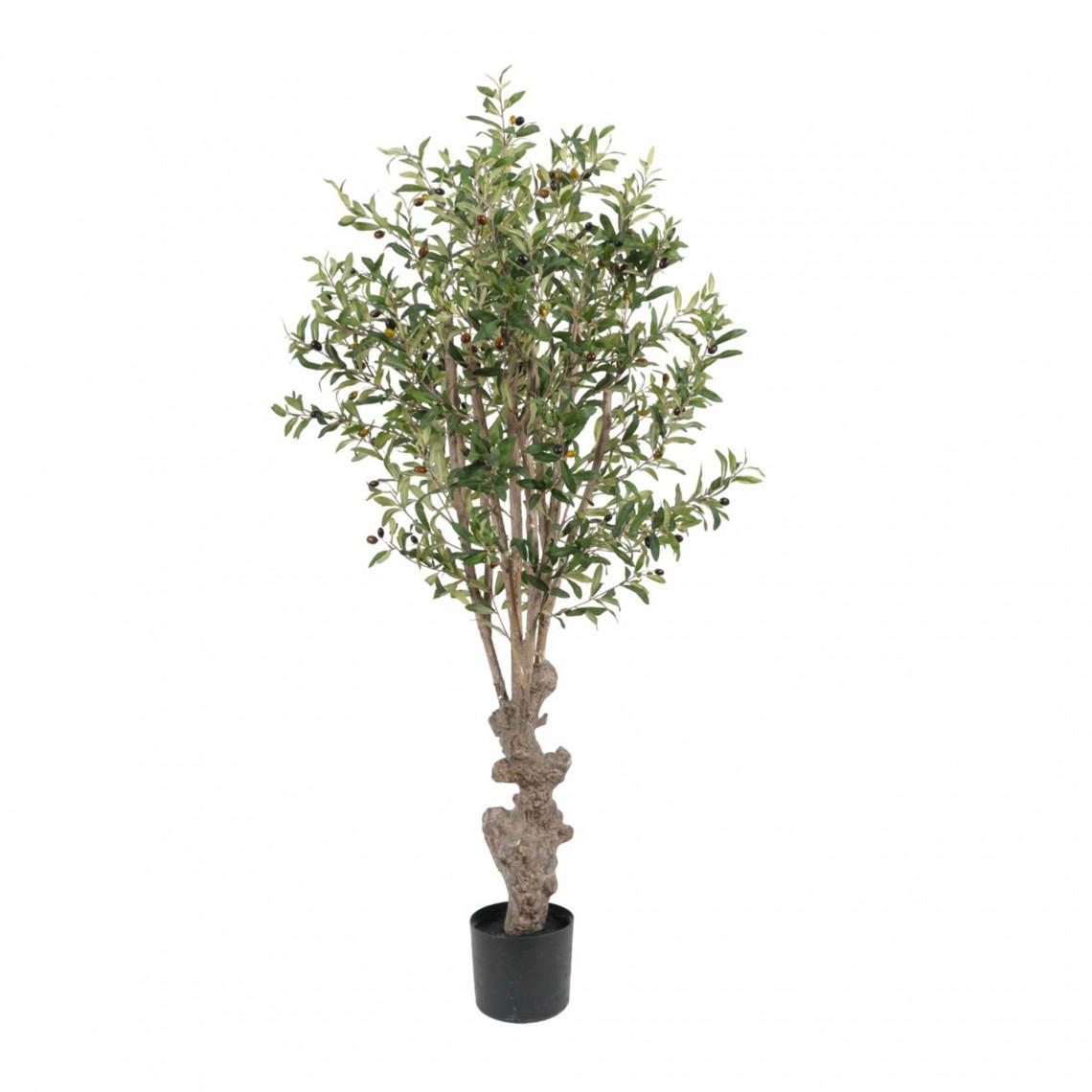 Konstväxt - Olivträd