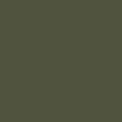 olivegreen-bx6.jpg
