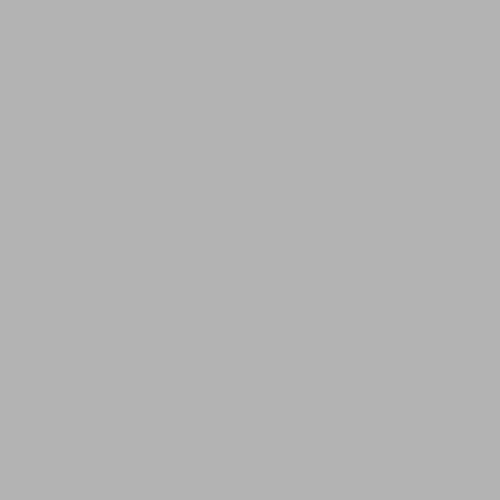 Ljusgrå 51