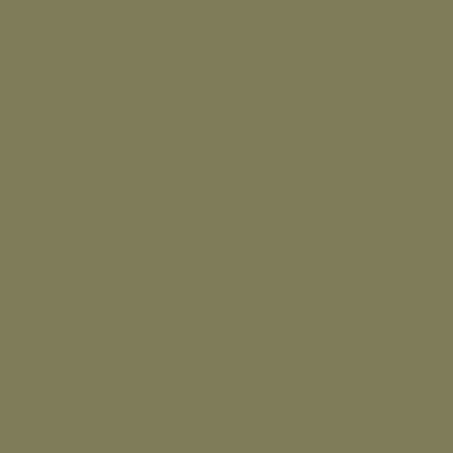 Olivgrön 64